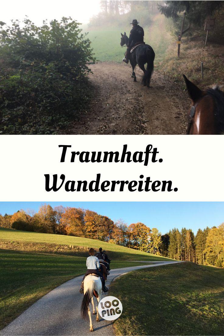 Wanderreiten In Osterreich Uber Stock Und Uber Stein In 2020 Wanderreiten Reiten Reisen