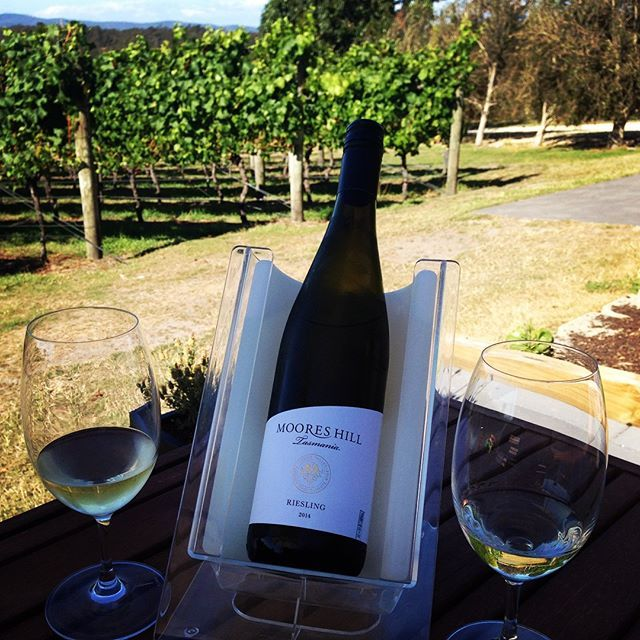 Perfect weather for Sunday afternoon wine tasting in the Tamar Valley #tasmania #tamarvalley #mooreshillwines @heydos7