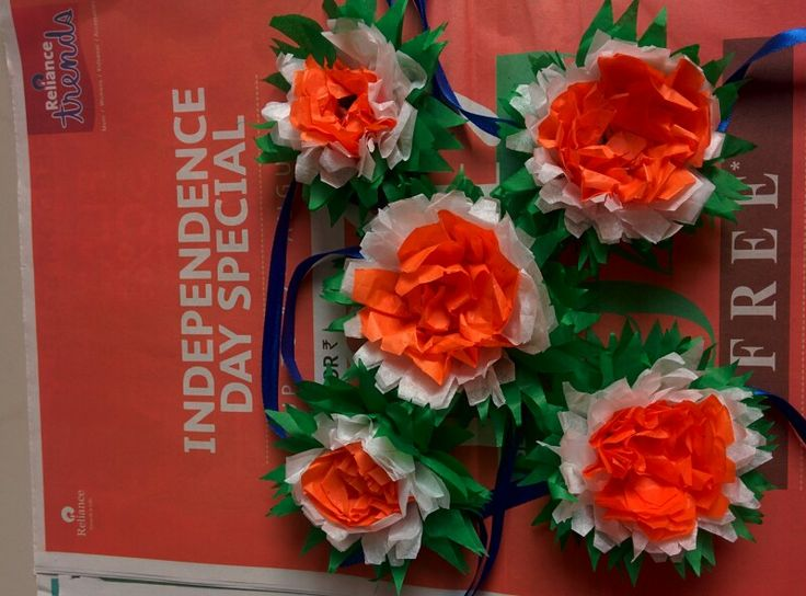 Tricolour flowers for independence day