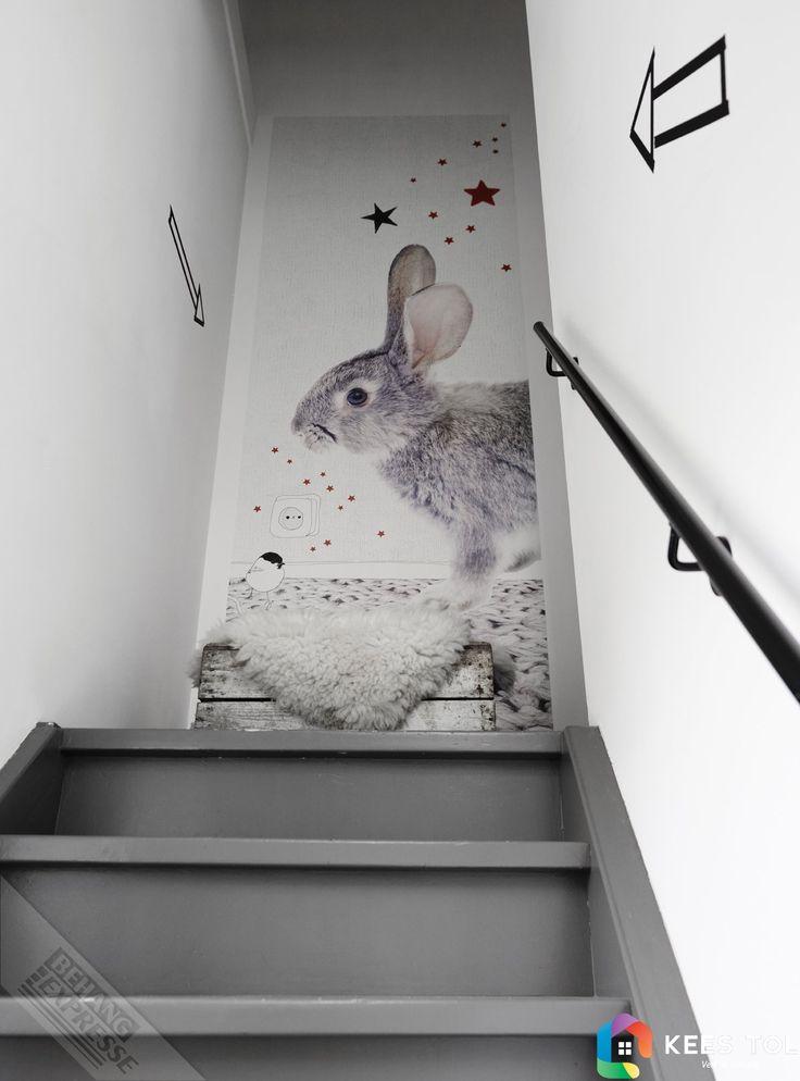 #Rabbit #BabyStyle #WallPower