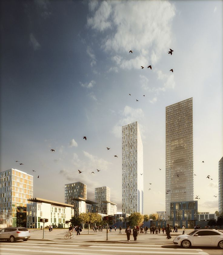 Birds and Buildings on Behance