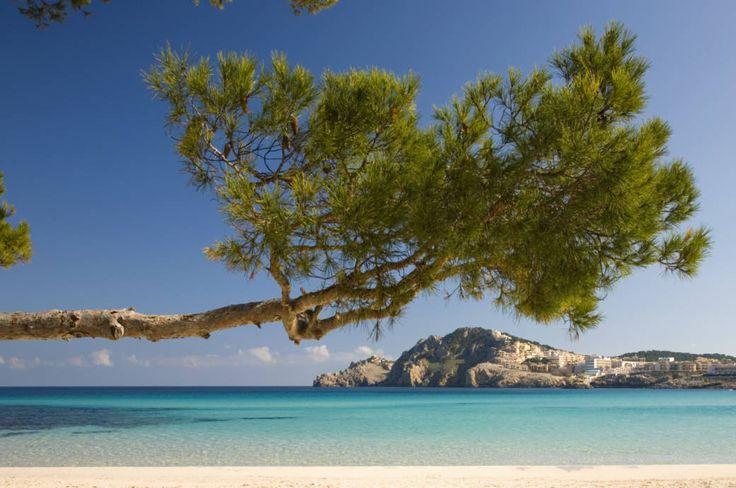 Bucht Cala de Augulla grenzt an den Ort Cala Ratjada im Westen von Mallorca