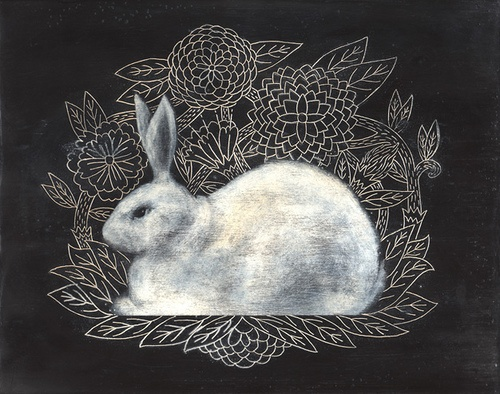 """White rabbit"" by Evan B. Harris"
