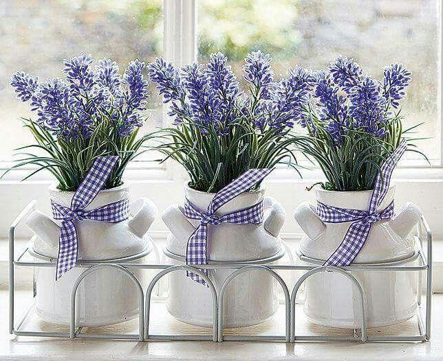 fiori - lavanda