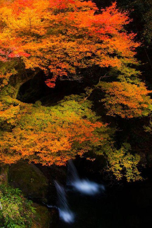 lifeisverybeautiful: Tokushima, Japan by Koji Ishimoto via...