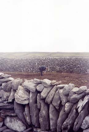 B And B Aran Islands Inis Mor 1000+ images about Inis Mor Island - Aran Islands on Pinterest ...