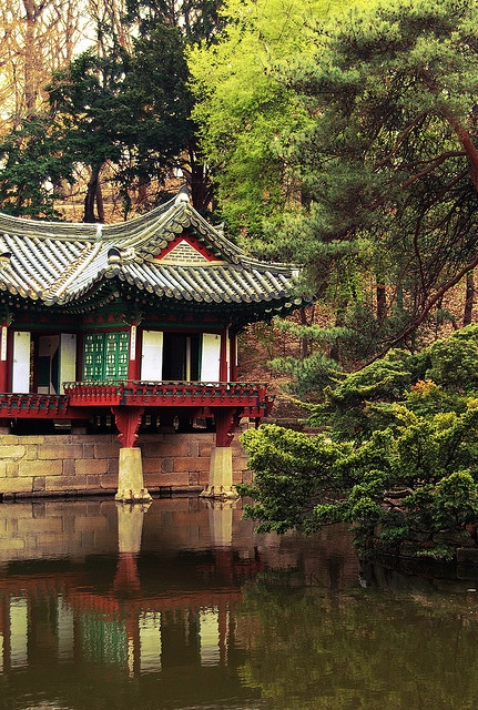 Secret Garden of Changdeokgung Palace, Seoul, South Korea