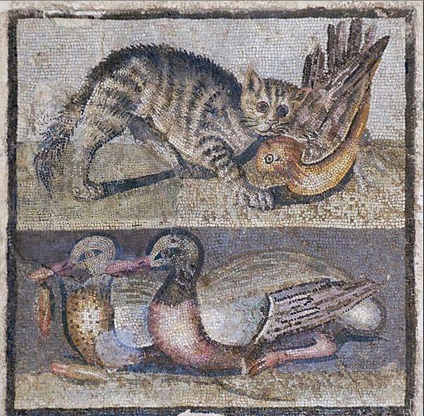 Opus vermiculatum - техника римской мозайки с использованием тессер не больше 4 мм. Использовалась в основном для основного элемента мозайки, для более подробного изображения деталей первого плана, могла использоваться только для изображения головы. Для фона как правило использовалась техника Opus tessellatum (более крупные тессеры).