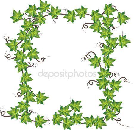 Стоковые векторные изображения Виноградная лоза  - Страница 3 | Depositphotos®