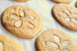 Sand Dollar Snickerdoodle cookies to go with Night of the Moonjellies