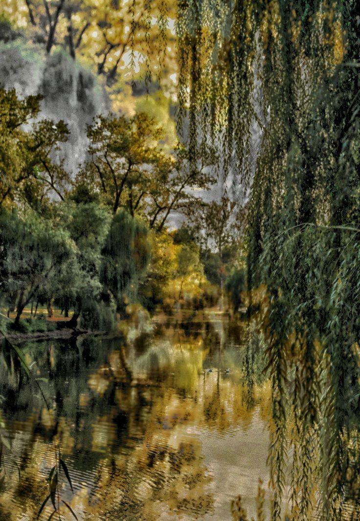https://flic.kr/p/RqRBrF | Etude #160904DSC2303HDR2. | The old riverbed.