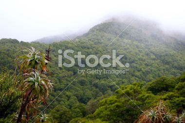 Mountain Neinei with Distant Mist, The Kahurangi National Park Royalty Free Stock Photo