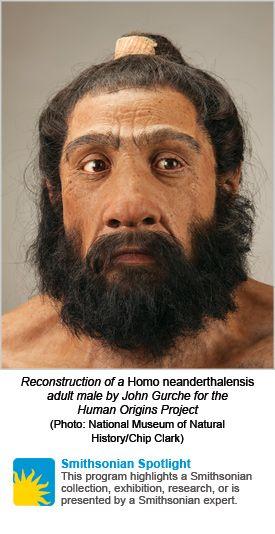 Homo de neandertal Reconstrucció de John Gurche.