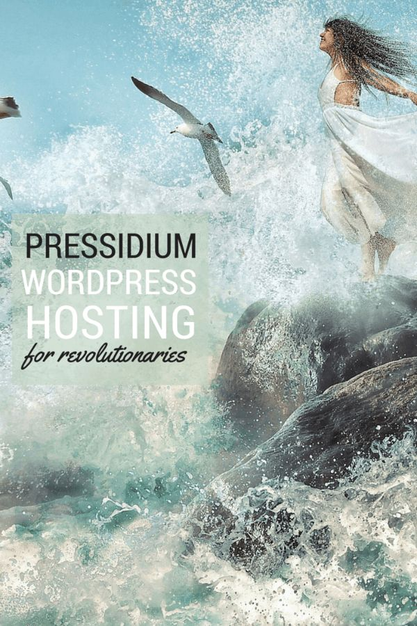 Pressidium Managed WordPress Hosting is revolutionizing the hosting industry. This review guides you through what to expect as a customer, including how to sign up, navigating the customer portal and initiating free migration.