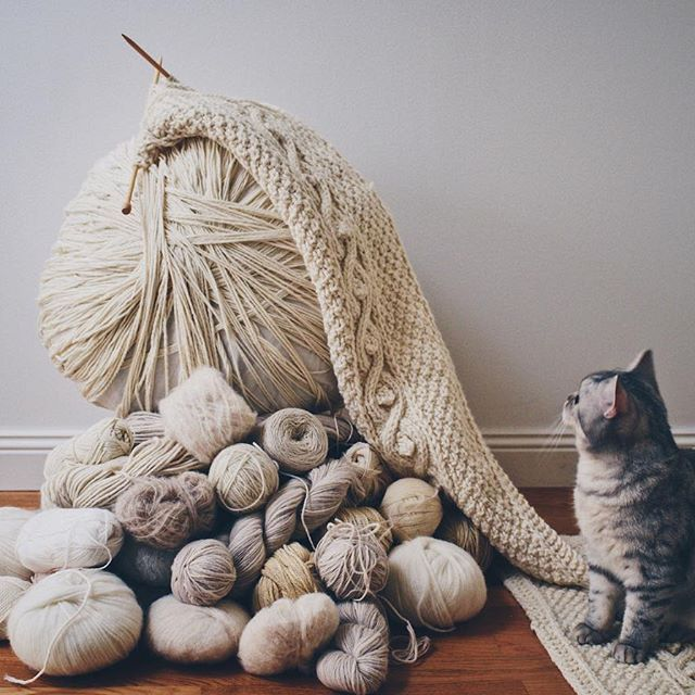 This week I've got a mountain of knitting to do for a design market that's coming up next weekend. Hmm maybe I can teach Luna how to knit so she can help me?  What projects are you working on this week? Oh and by the way, goodmorning #mondaymornings