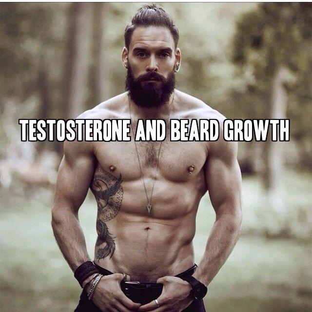 4 Steps to Increase Testosterone and Beard Growth at beardoholic.com