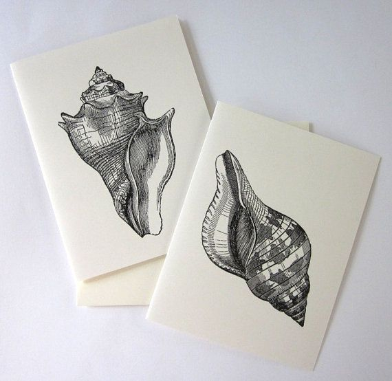 Conch Shell Cards Set of 10 in White or Light by PetitePaperie, $10.00
