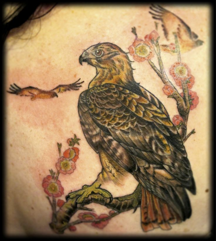Tattoo Quotes Hawk: 30 Best Hawk Tattoos Images On Pinterest