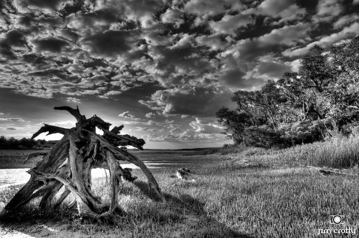 https://flic.kr/p/9JQFZu | May Afternoon on the Marshland in Black and White by Jim Crotty | Black and white landscape photography of Pinckney Island South Carolina