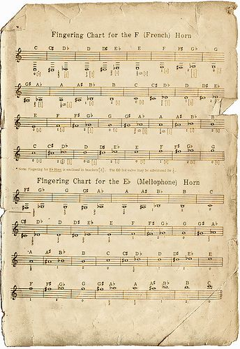 French Horn Fingering Chart by Calsidyrose, via Flickr