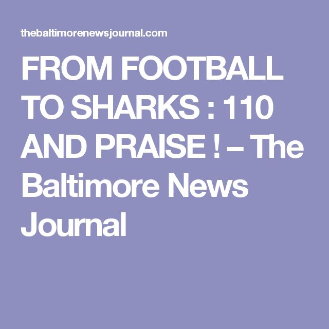 FROM FOOTBALL TO SHARKS : 110 AND PRAISE ! – The Baltimore News Journal
