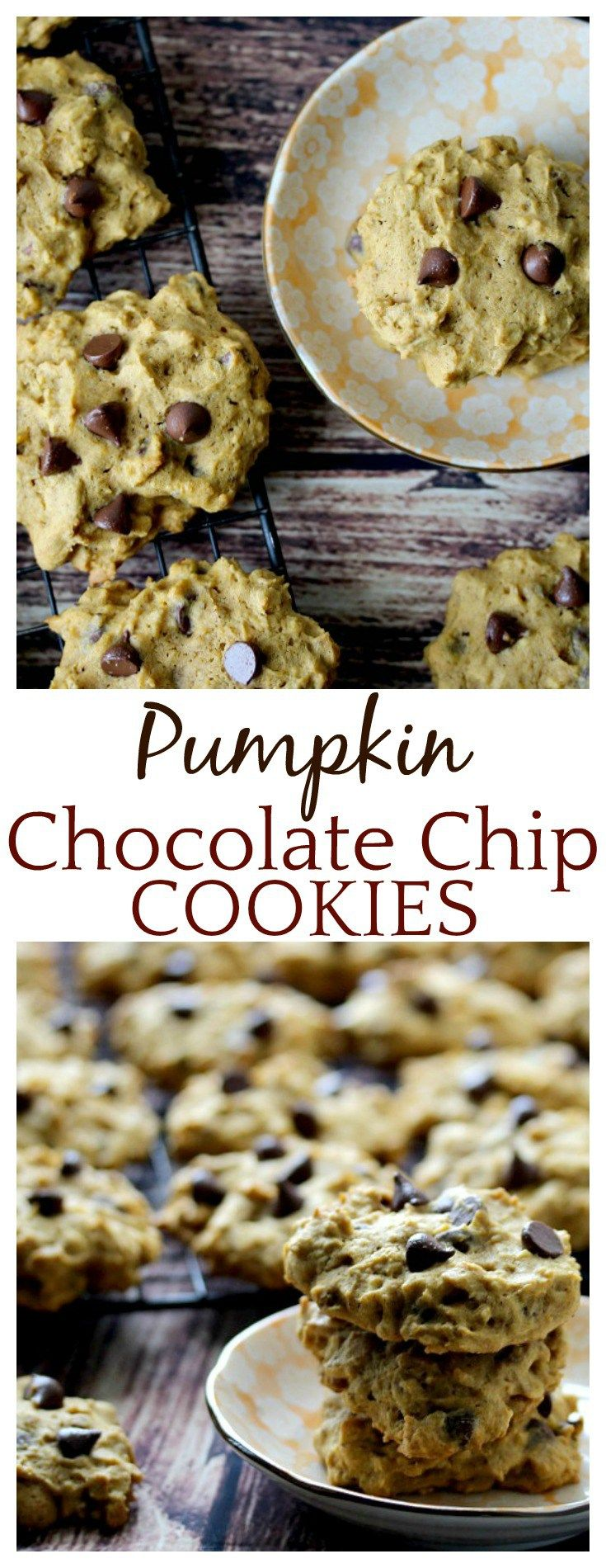 One bite and I was addicted to these Pumpkin Chocolate Chip Cookies! They stayed moist for days! Absolutely perfect!
