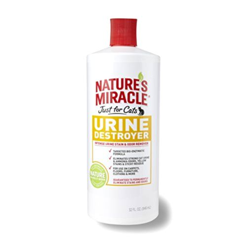 Natural Remedy For Cat Urine On Carpet
