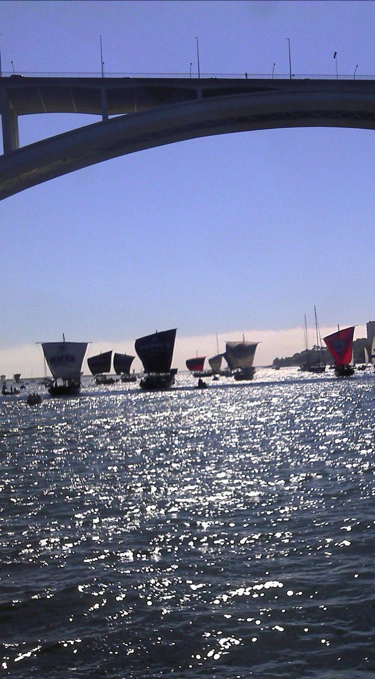 regata barcos rabelos   2012