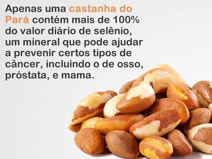 Castanha do Pará = Caju.