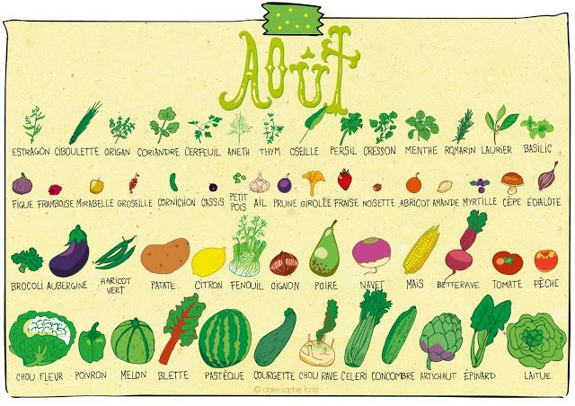 pissenlit : Août - Calendrier des fruits et légumes (great for teaching food + months/seasons)