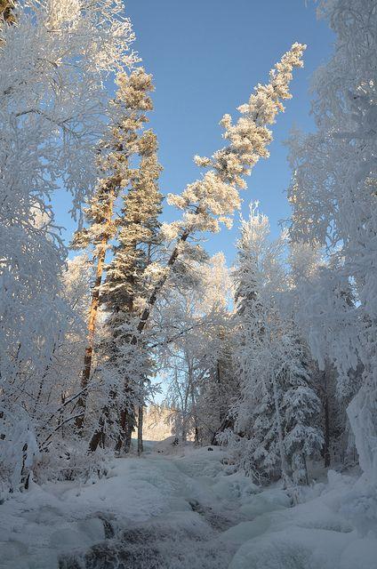 Yellowknife, Northwest Territories, Canada; photo by Jason Simpson