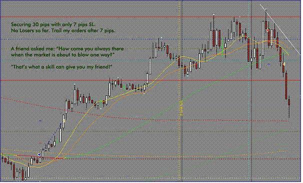 Alligator spread option strategy