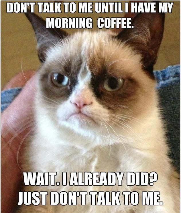 grumpy cat smile picture | Mr-Grumpy-cat-funny-hilarious-pictures-laughing-time-smile-LOL-time-17