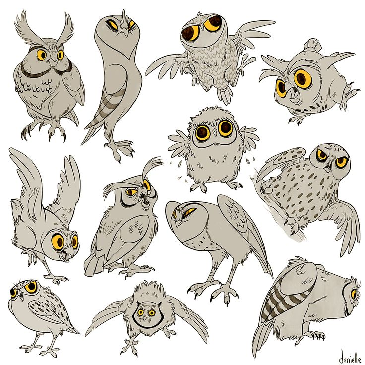 MANY OWLS HANDLE IT by doingwell.deviantart.com on @deviantART