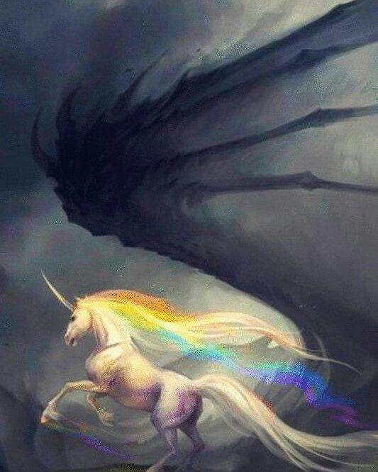 Nós somos unicórnios lutadores enfrentando a escuridão causada pelo preconceito e a discriminação. Vivemos em um mundo que apóia o ódio e condena o amor mas isso um dia vai acabar.  #lgbt #unicornio #rainbow #instagay #gayart #homofobia
