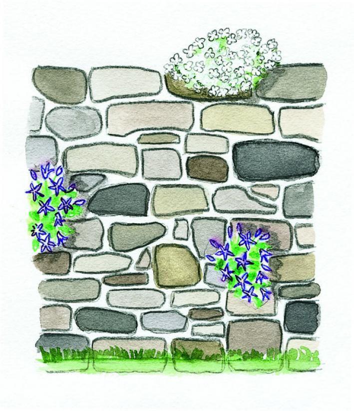 bauanleitung fr eine trockenmauer - Gartenideen Wall