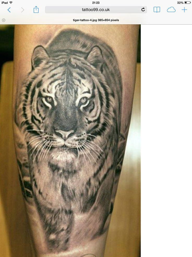 Tiger. I'm thinking on my back