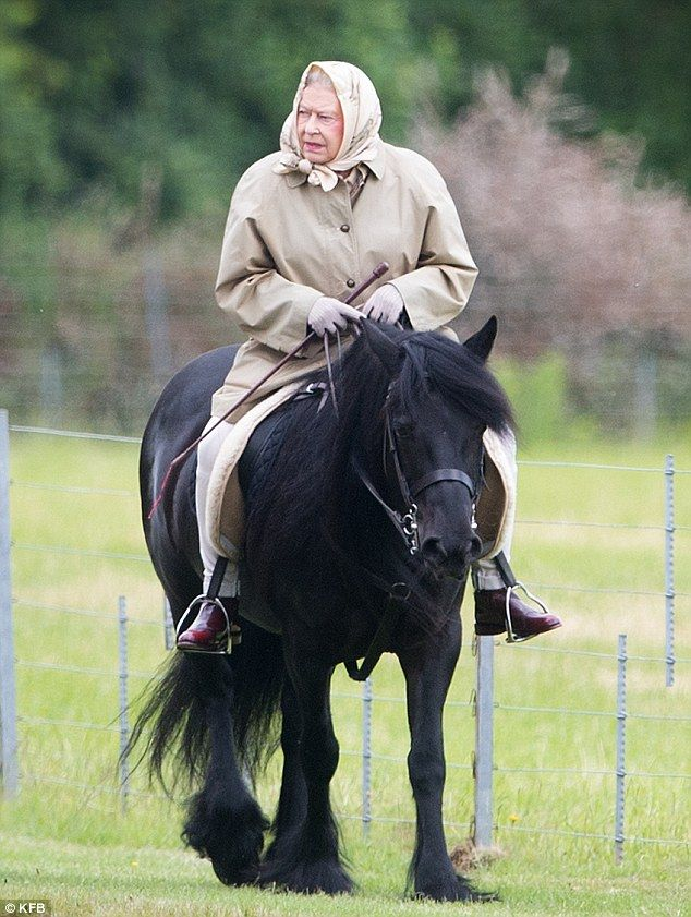 dailymail:  Queen Elizabeth took a ride on her favourite pony, homebred Fell pony mare, Carltonlima Emma, during an outing in Windsor Great Park, June 1, 2015