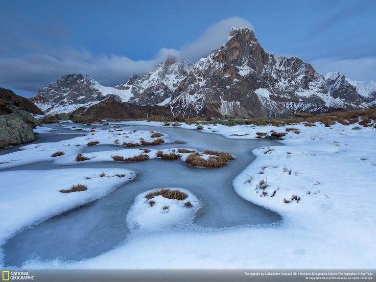 В число победителей Nature Photographer of the Year от ...