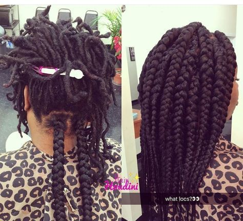 Box Braids Over Locs Amazing Natural Hair Styles