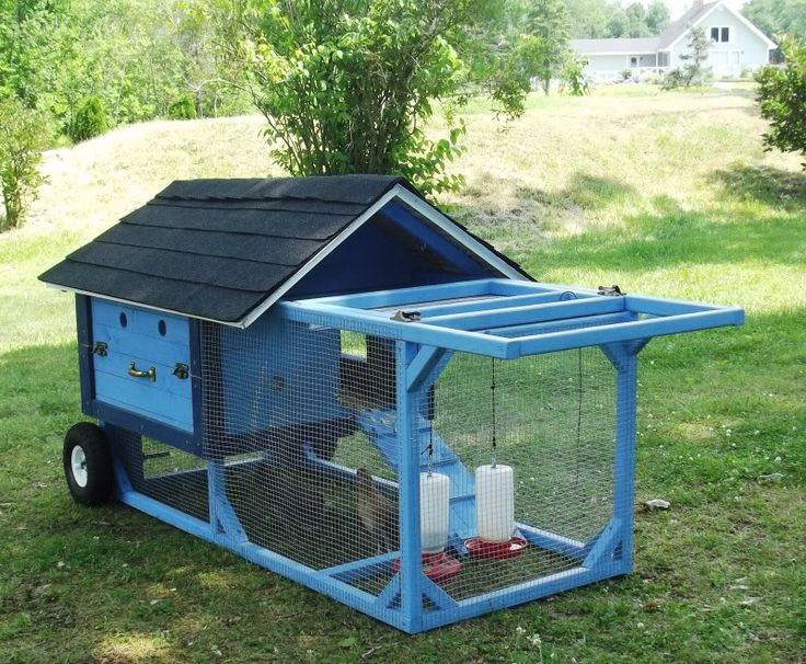 Best 25 chicken tractors ideas on pinterest mobile for Portable coop
