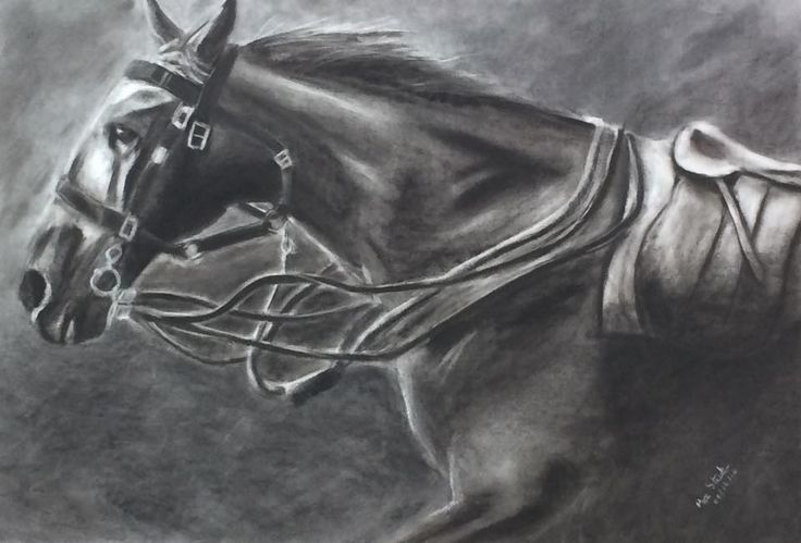 War Horse - Charcoal Drawing - Max Streeter