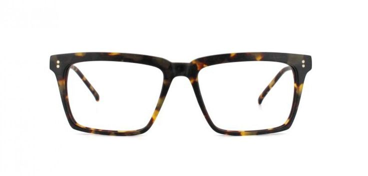 EDGE I Based on a classic look but with more personality for a sharp look.  Fantastic camouflage style havana acetate.