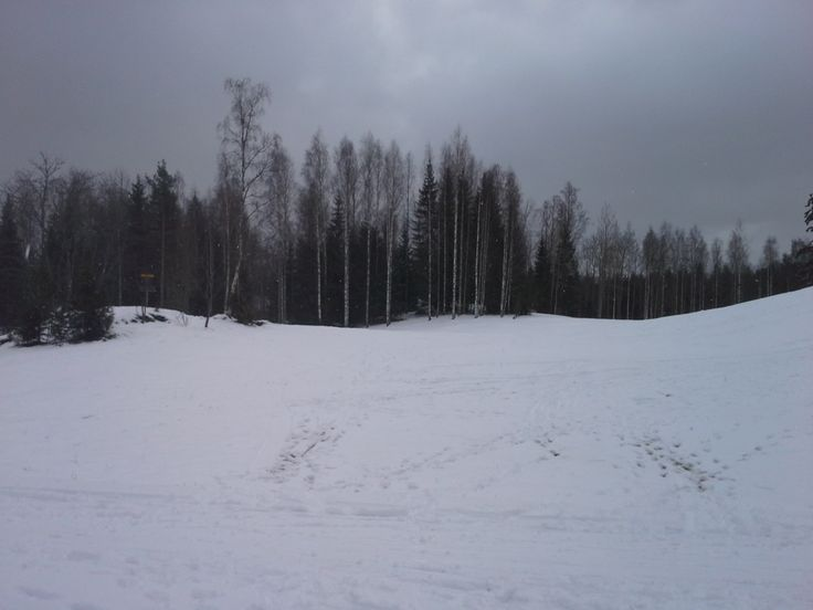 No 1 Basket at Keunakallio DGC in Kerava Finland. Photo from March 2014