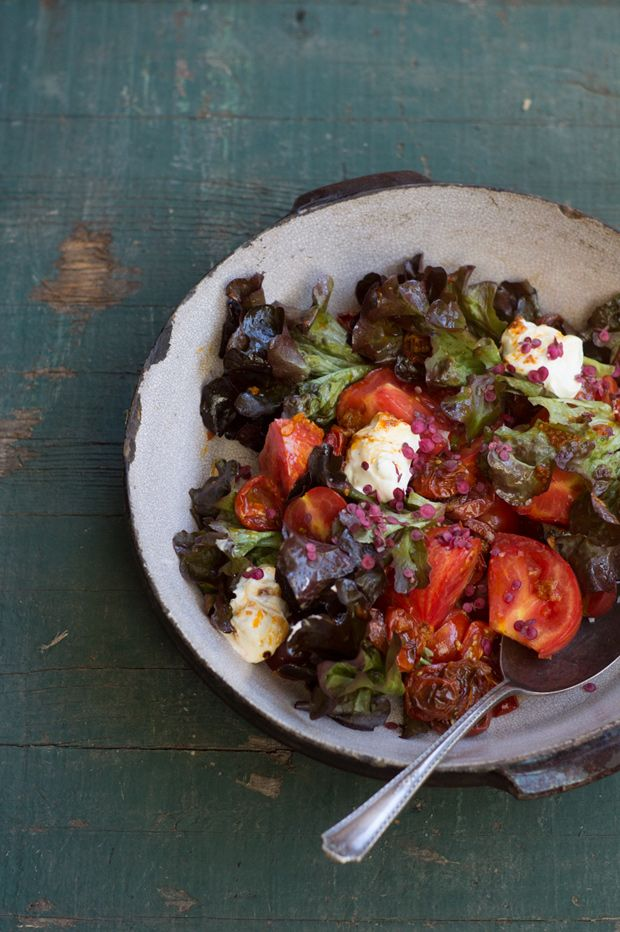 Roasted Tomato Salad Recipe- The next time you think of making a caprese salad, consider this instead. The special combination of both raw and roasted tomatoes, with bright harissa oil brings an element of the unexpected. - from 101Cookbooks.com
