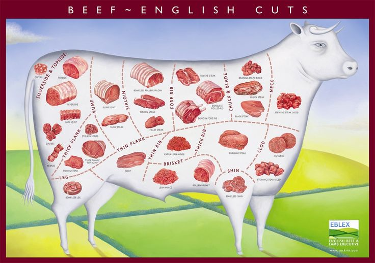 Most cuts of beef – 7 grams of protein per ounce