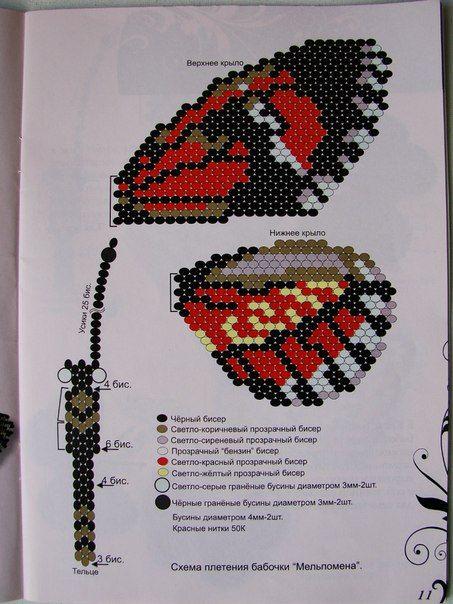 Бабочки. Большие сканы   328 фотографий