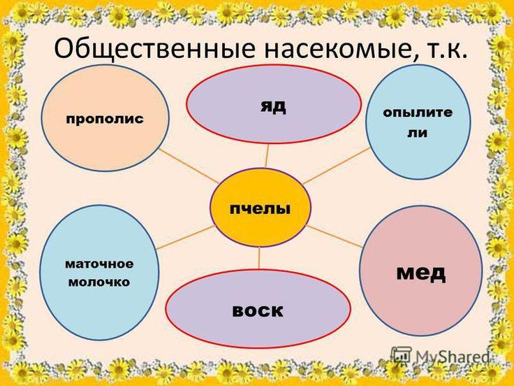 Суперботаник ру биология 8 класс