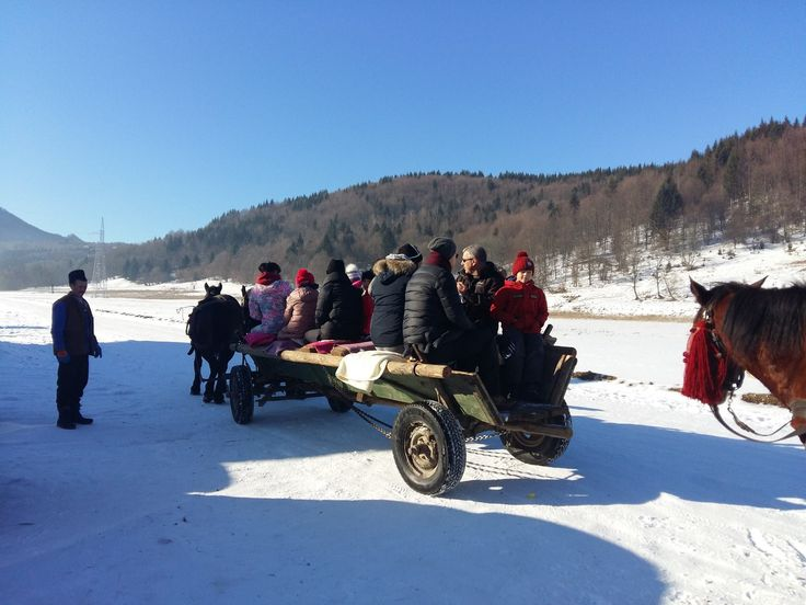 Activitati pentru copii in muntii Ciucas, la Pastel Chalet