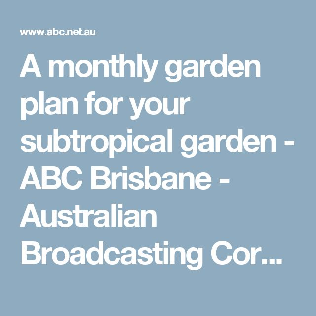 A monthly garden plan for your subtropical garden - ABC Brisbane - Australian Broadcasting Corporation